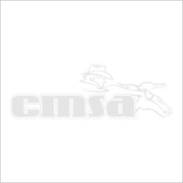 10 CMSA Approved Target RED, BLUE or WHITE Base & Pole Set